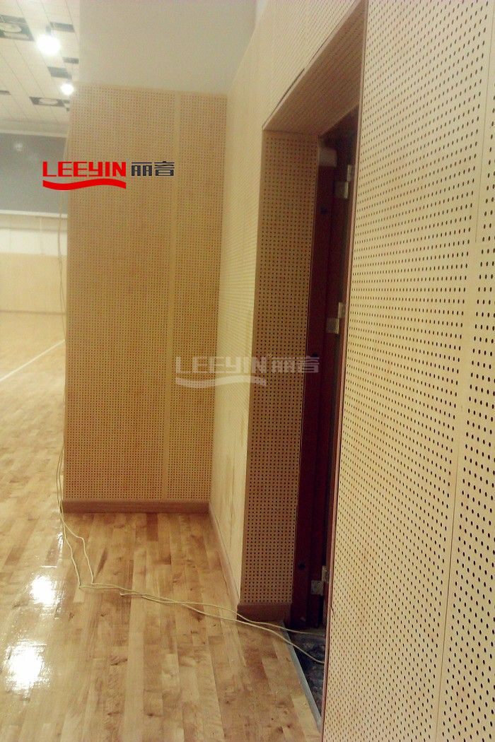 Wooden Perforated Wall Panel for Gymnasium